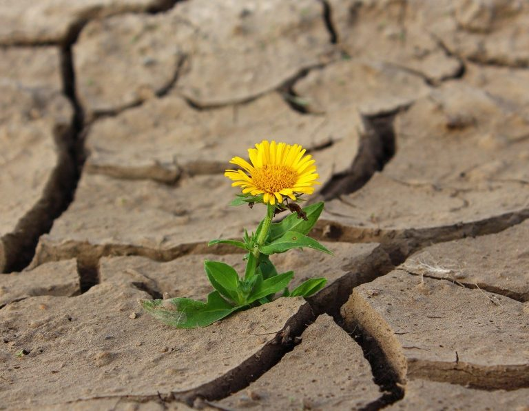 Mamy szansę, by zbudować nowy, lepszy świat